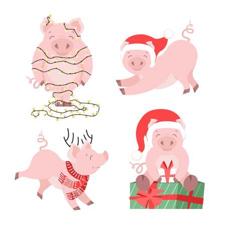 Cute Christmas pig set. Winter holiday piggy vector illustration for cards isolated