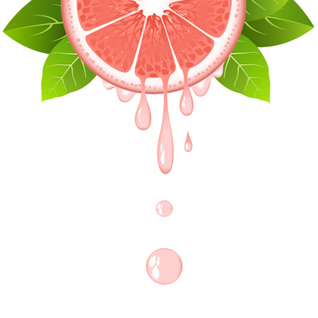 Realistic half grapefruit slice with leaves and drops of juice. Juicy fruit. Fresh citrus design on white background vector illustration