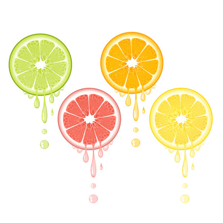 Realistic citrus slice set with leaves and drops of juice. Juicy lemon grapefruit lime and orange fruit. Fresh organic fruit design on white background vector illustration
