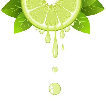 Realistic half lime slice with leaves and drops of juice. Juicy fruit. Fresh citrus design on white background vector illustration