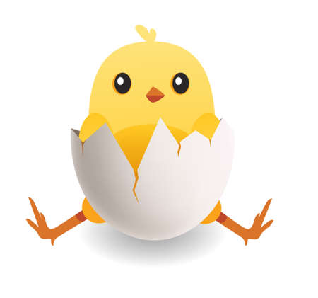 Cute yellow bird in cracked egg. Chick hatches from egg vector illustration
