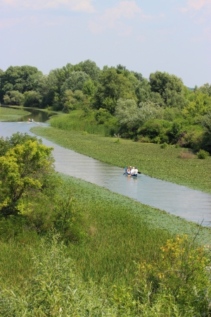 Swamp with lush vegetation in Hungary photo
