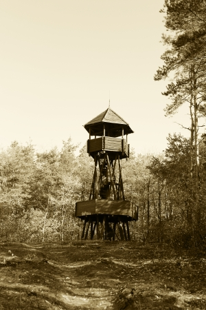 Wooden lookout tower in the woods - outdoor photography photo