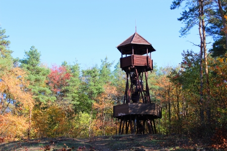 Wooden lookout tower in the woods - outdoor photography