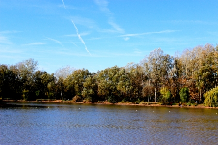 waves on water of lake and green trees on sky background Stock Photo