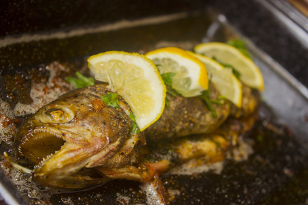 Delicious baked rainbow trout straight from the oven with  lemon and herbs. Stock Photo