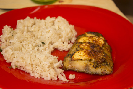 food photography: Fish and rice on a red plate - food photography Stock Photo