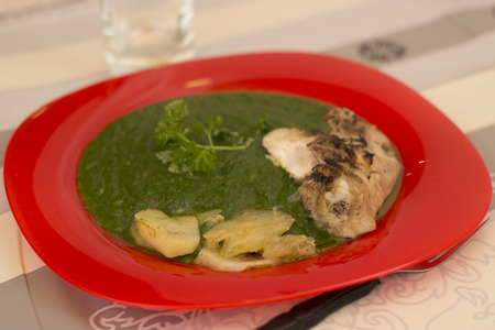food photography: Spinach and chicken in a red plate - food photography Stock Photo