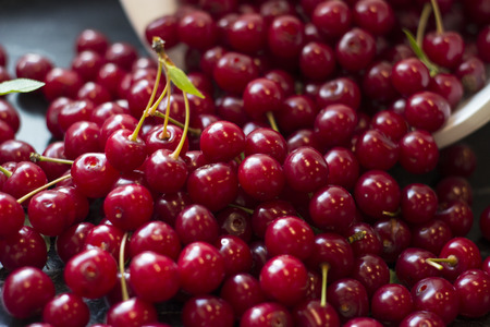 sour cherry: Fresh harvested sour cherry in the kitchen