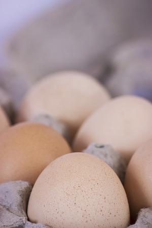 food photography: Close up picture from eggs in a holder - food photography Stock Photo