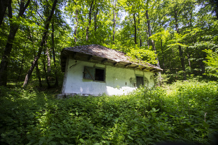 Abandoned house deep in the forest Stock Photo