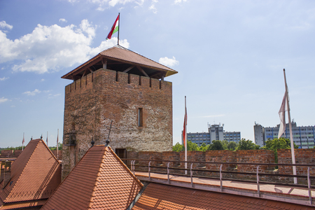 Castle of Gyula - Hungarian brick castle Editorial