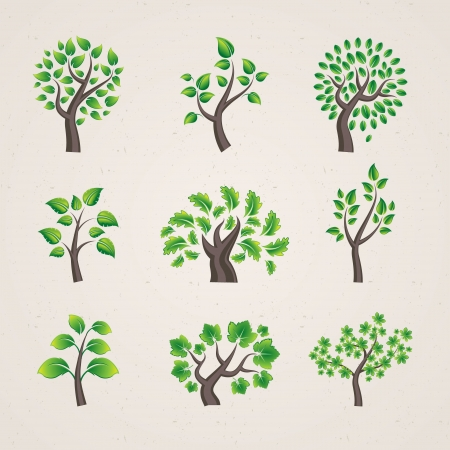 trees  Stock Vector - 13860025