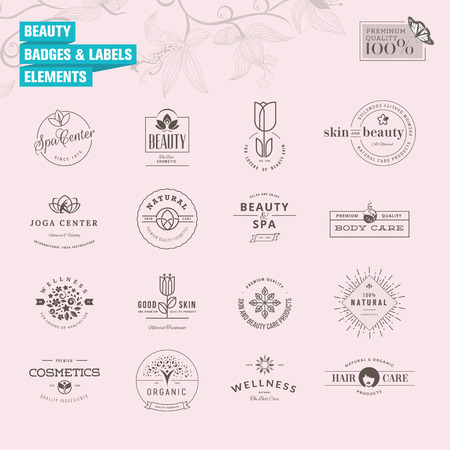 美女: 集徽章和標籤的美容元素