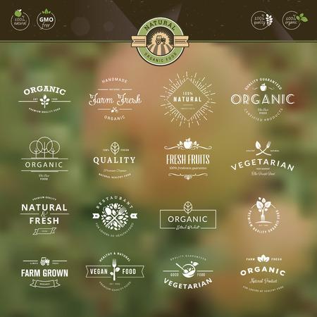 자연 배경에 유기농 식품과 음료 레이블 및 배지 빈티지 스타일의 요소의 집합 일러스트