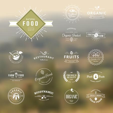 comida saludable: Conjunto de elementos de estilo vintage para las etiquetas y distintivos para la comida natural y bebida, productos org�nicos, la agricultura biodin�mica, en el fondo la naturaleza