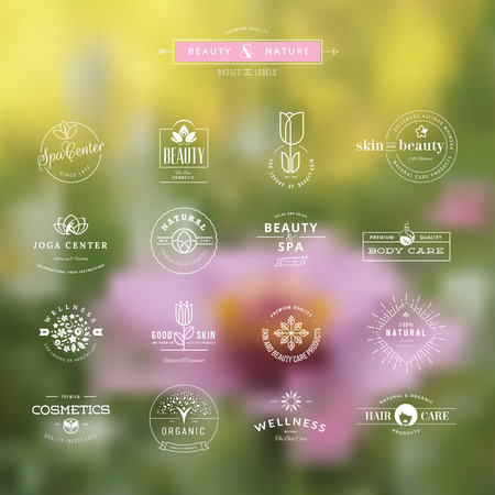 wellness: Set of vintage style elements for labels and badges for beauty, health care, cosmetics, spa and wellness, on the nature background