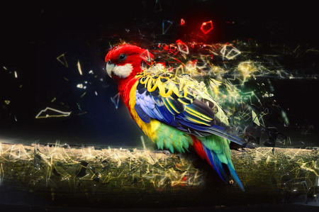 Parrot on the branch abstract animal concept. Stock Photo