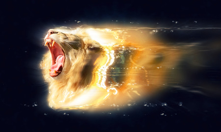 White lion with open jaws, abstract animal concept. Stock Photo