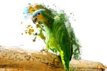 Green parrot on the branch, abstract animal concept.