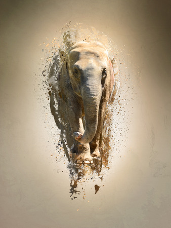 photo manipulation: Elephant, abstract animal concept. Can be used for wallpaper, canvas print, decoration, banner, t-shirt graphic, advertising.
