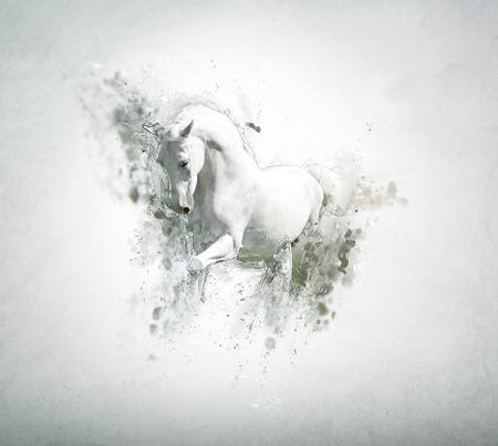 Caballo blanco agraciada, concepto abstracto animal. Puede ser utilizado para el papel pintado, impresión de la lona, ??decoración, bandera, camiseta gráfica, publicidad. Foto de archivo - 35470062