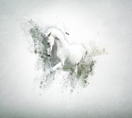 Graceful white horse, abstract animal concept. Can be used for wallpaper, canvas print, decoration, banner, t-shirt graphic, advertising.