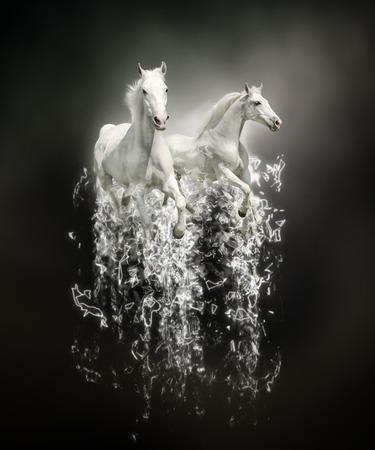 흰 말, 검은 배경에 추상 동물 개념입니다. 벽지, 캔버스 인쇄, 장식, 배너, 티셔츠 그래픽, 광고에 사용할 수 있습니다. 스톡 콘텐츠