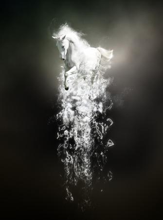 Wit paard lopen, abstract dier concept op zwarte achtergrond. Kan gebruikt worden voor behang, canvas, decoratie, banner, t-shirt grafisch, reclame. Stockfoto