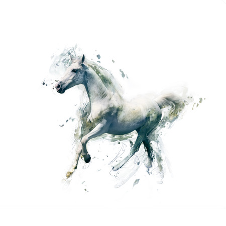 Wit paard, abstracte dierlijke concept geïsoleerd op wit. Kan gebruikt worden voor behang, canvas afdrukken, decoratie, banner, t-shirt grafisch, reclame. Stockfoto