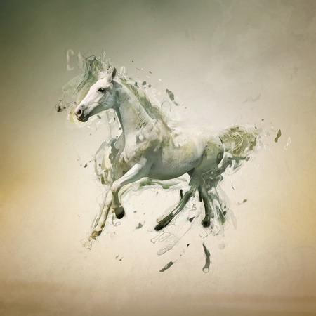 photo manipulation: White horse in motion, abstract animal concept. Can be used for wallpaper, canvas print, decoration, banner, t-shirt graphic, advertising. Stock Photo