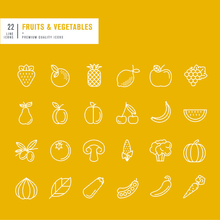 organic peppers sign: Set of thin line web icons for fruits and vegetables Illustration