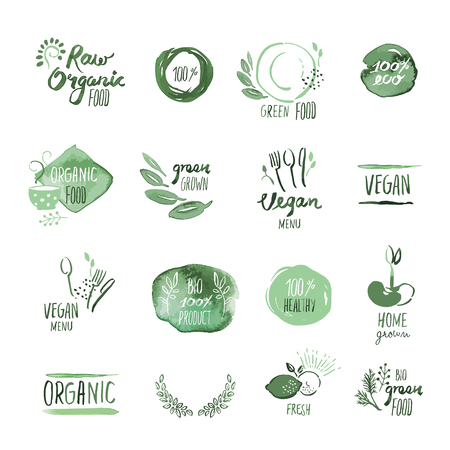 organic: Set of organic food hand drawn watercolor stickers and elements. Vector illustrations for organic food and drink, restaurant and organic products.