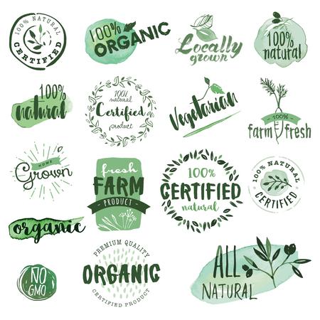 productos naturales: Etiquetas de los alimentos orgánicos e insignias. Dibujado a mano de acuarela conjunto de ilustración vectorial para la comida y la bebida, restaurante, productos naturales. Vectores