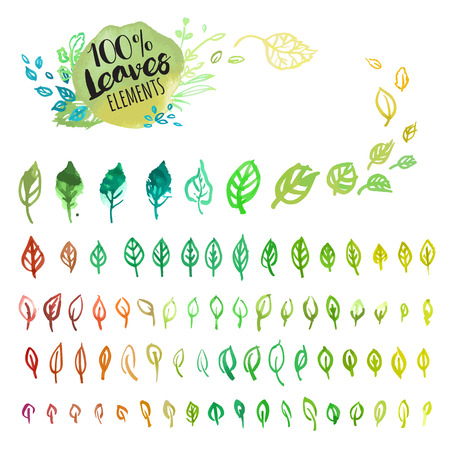 Set of hand drawn watercolor colorful leaves. Vector illustrations for graphic and web design, for nature, natural products, spa and cosmetics, beauty and fashion, environment. Illustration