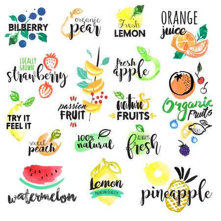 手描き水彩のラベルとフルーツのステッカーのセット。グラフィックや web デザイン、食べ物や飲み物、レストラン、バー、メニューの果物市場、有