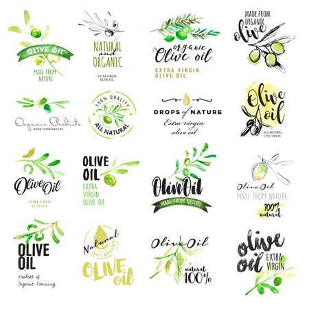Set of hand drawn watercolor labels and elements of olive oil. illustrations for olive oil labels, packaging design, natural products, restaurant Vectores