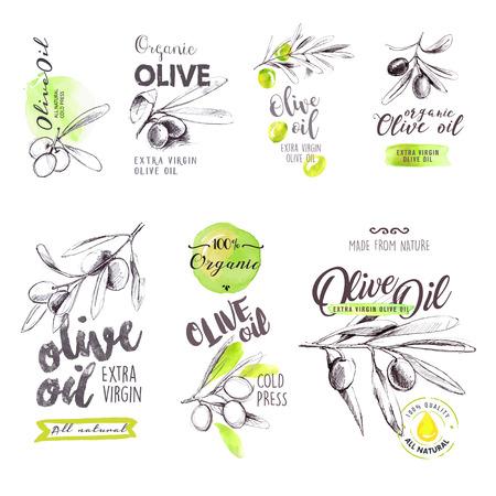 Définir des étiquettes et des signes d'huile d'olive aquarelle tirée par la main.