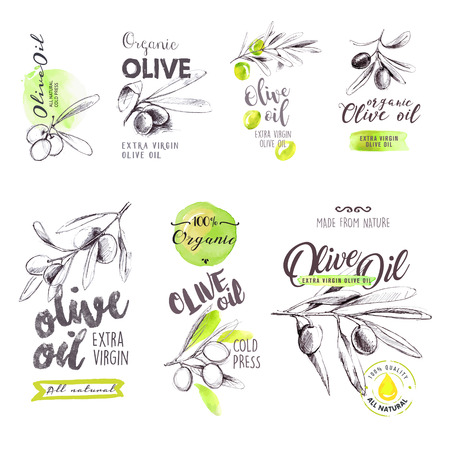 Set of hand drawn watercolor labels and signs of olive oil.