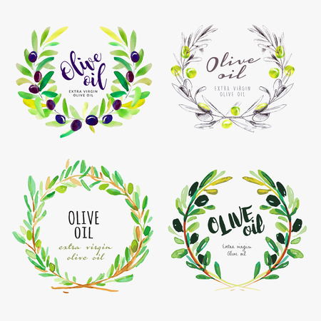 Hand drawn watercolor elements of olive oil. Set of vector illustrations for olive oil labels, packaging design, natural products, restaurant and menu. Illustration