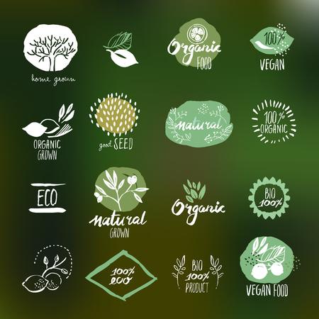 productos naturales: Conjunto de pegatinas de estilo dibujado a mano y distintivos para la alimentación y la bebida, productos naturales, restaurante, mercado de alimentos saludables y la producción, en el fondo de la naturaleza.