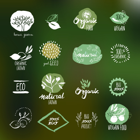 Set of hand drawn style stickers and badges for organic food and drink, natural products, restaurant, healthy food market and production, on the nature background.