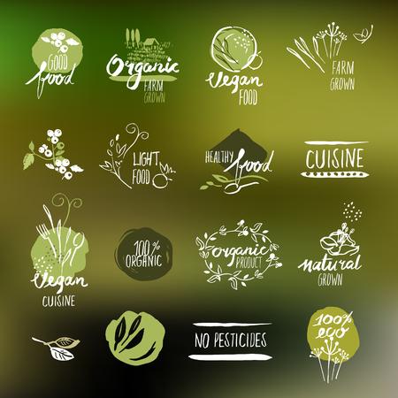 productos naturales: Conjunto de etiquetas de estilo dibujado a mano y distintivos para la alimentación y la bebida, productos naturales, restaurante, mercado de alimentos saludables y la producción, en el fondo de la naturaleza. Vectores