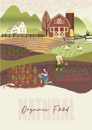 Organic farming, agriculture and gardening. Vector illustration for poster, brochure cover, background, business presentation, marketing material for food market and restaurants. Stock Illustratie