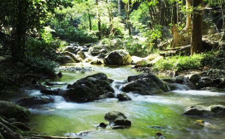 Waterfall in nature Stock Photo