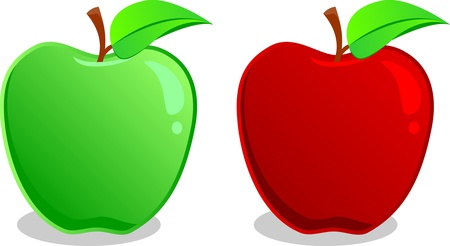 Crunchy red and green apples ready for any application Stock Vector - 18309173