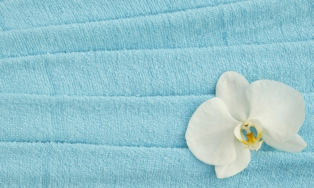 white orchid blue towels background