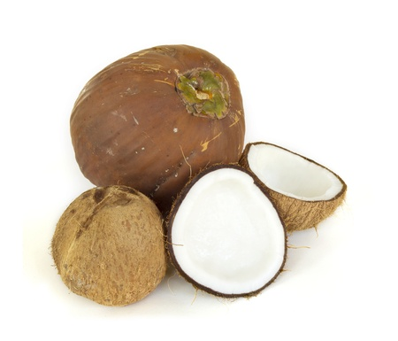 Coconut no White Background Stock Photo - 19244348