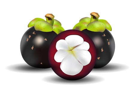 mangosteen: a half cut Mangosteen with shadows on white background