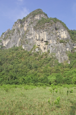 Limestone mountain surrounded by tropical forests of Thailand